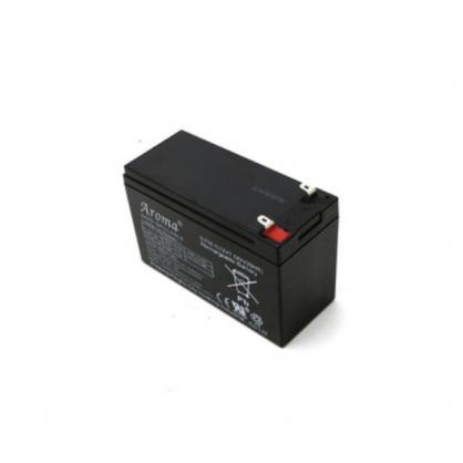 耀华DS3/A9/柯力D12/D2008衡天仪表12V/6V电池仪表蓄电瓶电池
